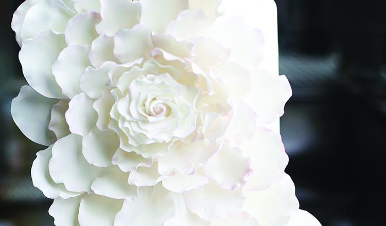 View More: http://teresaearnestphotography.pass.us/details-weddings-mag-teresa